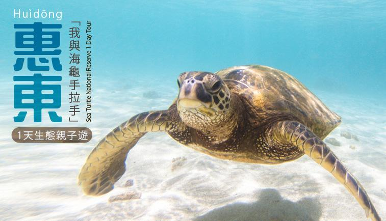 <b>與恐龍和海龜對話</b>了解地球的過去,聽聽海龜的故事!